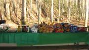 A FEAST for GoSmokies Hikers!!