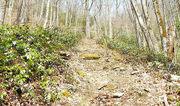 steeper section eagle creek