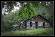 Cabin Flats Cabin