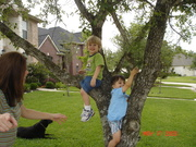 05 MAY Boys in the Tree GREAT