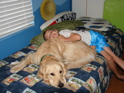 kids and there dogs 248
