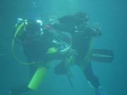 Shark Bait Boys Sea World Dive - 12-14 Dec 08 Dive 1 034 1