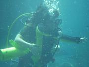Shark Bait Boys Sea World Dive - 12-14 Dec 08 Dive 2 046 1