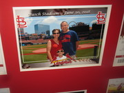 New Frame Busch stadium