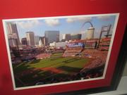New Frame Busch stadium