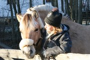 My Horse and Me!
