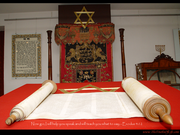 Torah Scroll - Speak