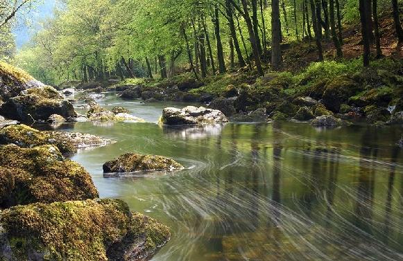 ~~River Flow~~