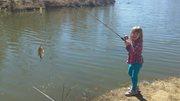 Allen's Fishing pics