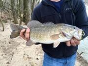 Nice February River Smallmouth