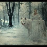 Queen_Wolf_by_Mithgariel
