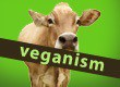 Veganism label over cow with green background