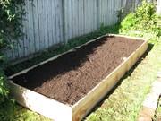My new garden box 3