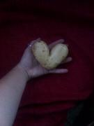 Lovers potato