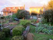gardenstove view