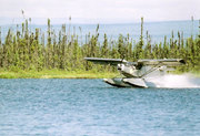 Flying the STOL CH 701 on floats in Alaska