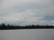 Fly In to Moose Camp
