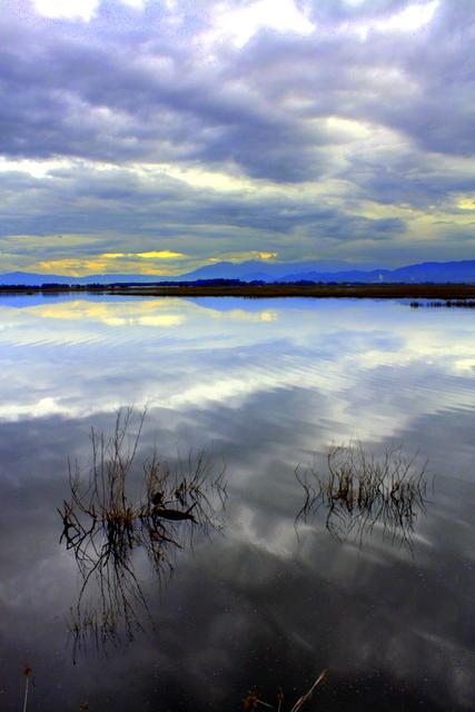 reflection,.,.