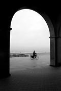 Ο  ποδηλατης,.,