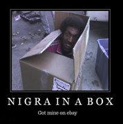 nigger_in_a_box0