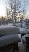 It's a winter wonderland out the backdoor