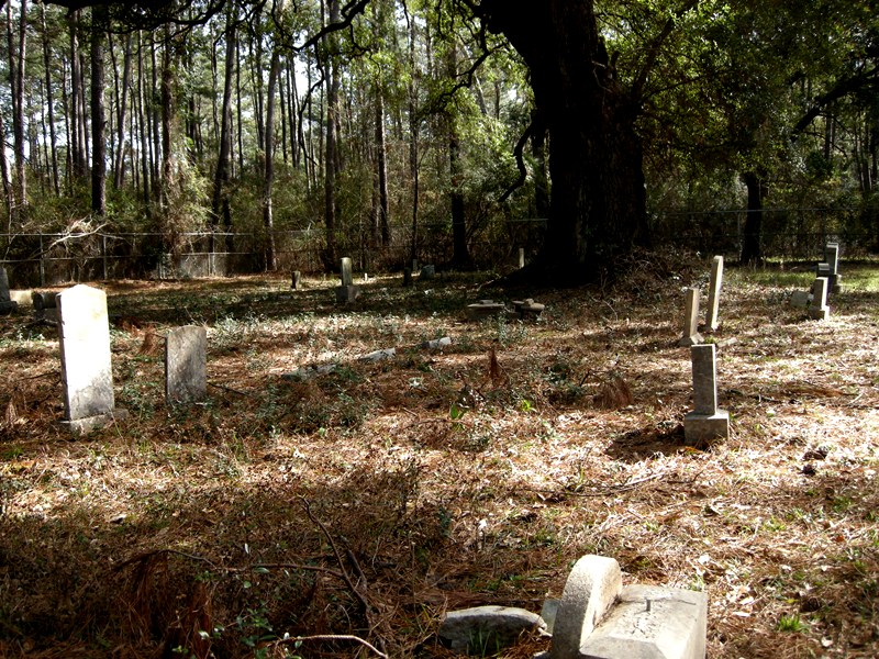 Looking Towards the SE Corner Inside the Cemetery