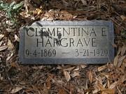 Clementina E Wunsche Hargrave