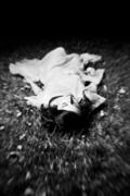 夢:私我的神話〈Private Myths: Dreams & Dreaming〉29