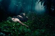 夢:私我的神話〈Private Myths: Dreams & Dreaming〉28