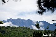 劉富威: 沙巴神山 Mt Kinabalu 06
