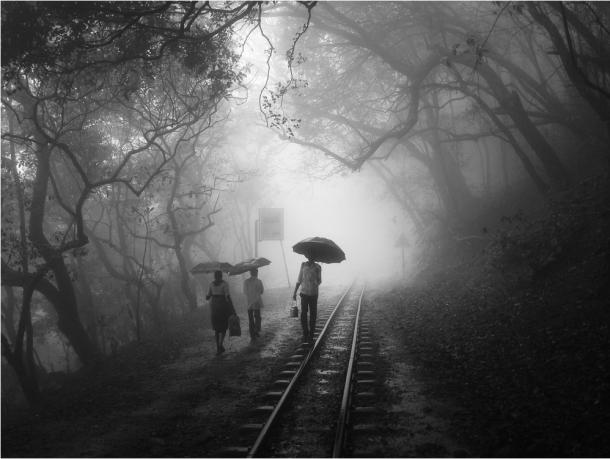 phanindra hothur:Umbrellas in Black and White