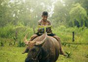 Reading time by Yothin Insuk