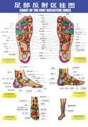 cit foot