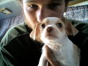 """My new puppy """"flower"""""""