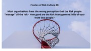 Flashes of Risk Culture 8
