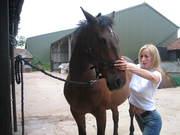 Horse and dog and Nicki 1 024
