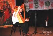 Temperley Celtic Festival