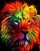 firey lion