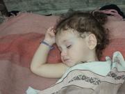 ბუნების ჰაერზე ტკბილად სძინავს