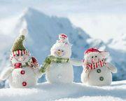 თოვლის სამი სტუმარი