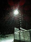 თოვლს ღამე ყვარებია