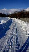 თოვლის ნაკვალევი