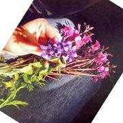 ყვავილები კალთაში