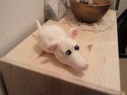 Katzenspielzeug Ratte