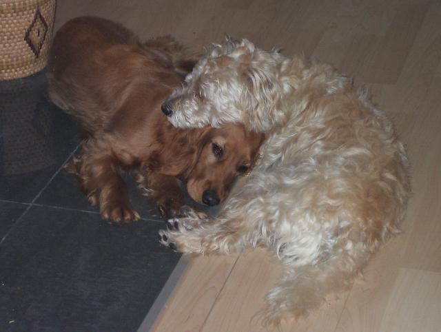 Max und Jenny