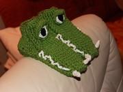 Seitenansicht Krokodiel