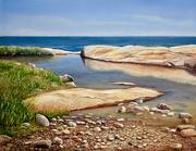 Tidal Pool on Narragansett Bay