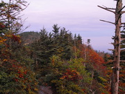 Fall already on LeConte