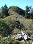 Gramps on Parton Ridge