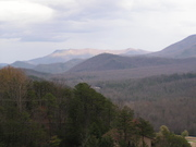 View Toward Mt. Cammerer from Webb Mtn - Spring '09